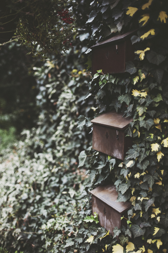 ivy mailboxes