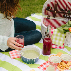 Summer Picnic | Kathryn McCrary Photography