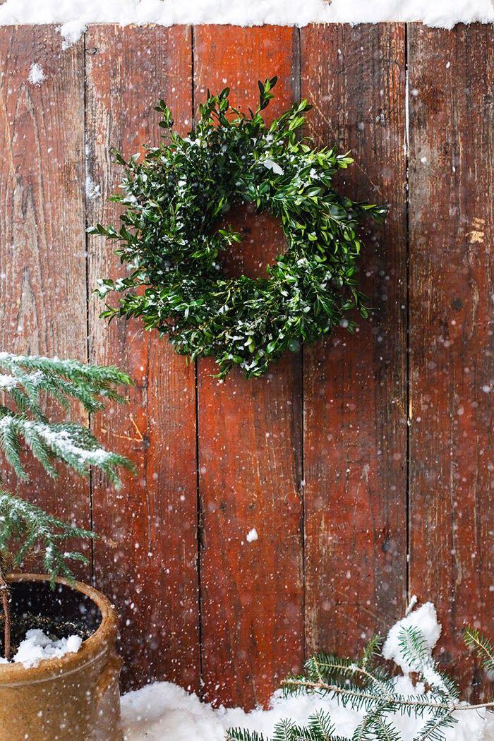 DIY Boxwood Wreath via Poppytalk