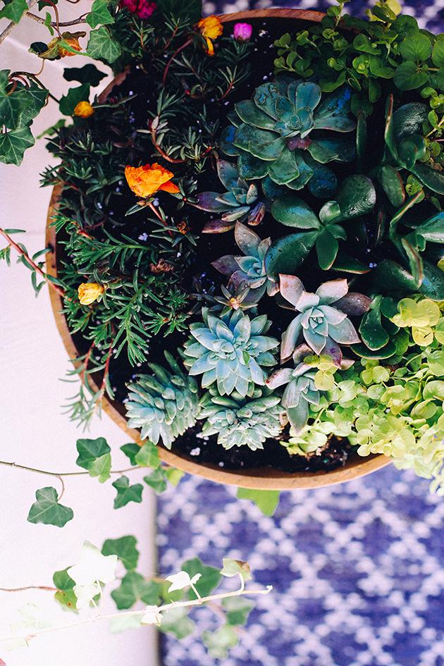 DIY Succulent Bowl