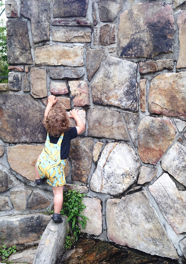 Little Rock Climber
