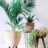 DIY-Modern-Planter