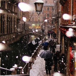 snowy day in venice
