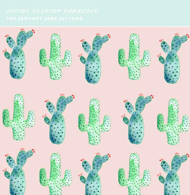 cactus dekstop download
