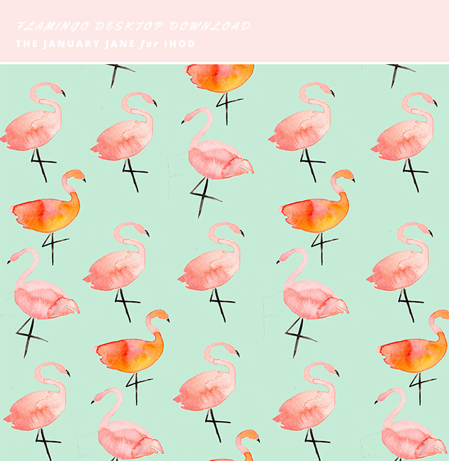 flamingo backdrop