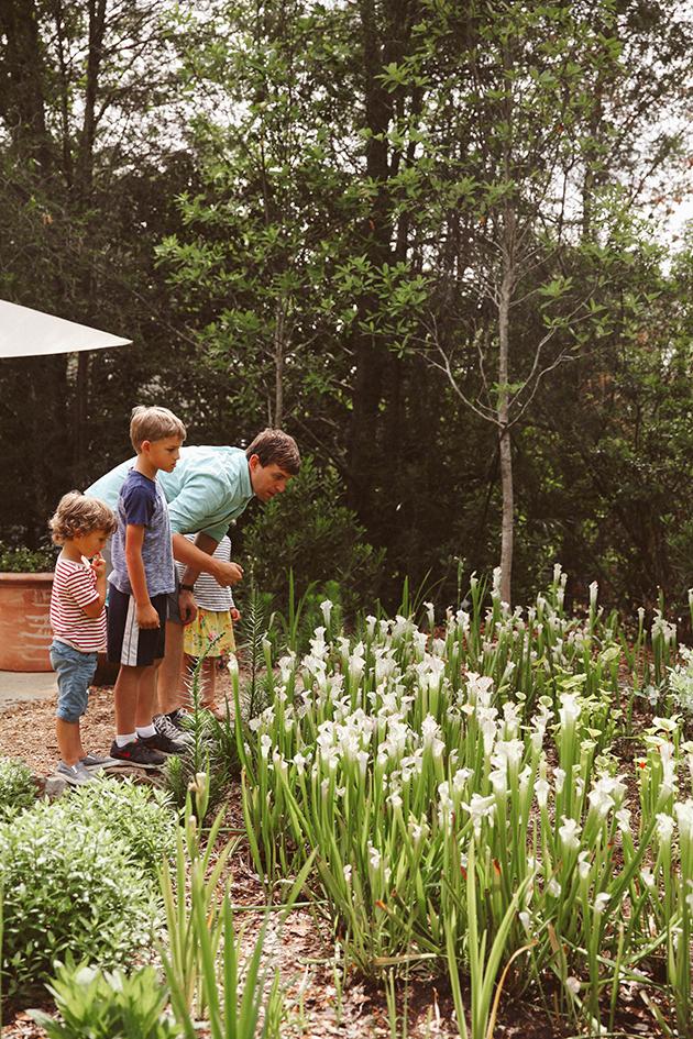 City Guide Atlanta Botanical Gardens In Honor Of Design