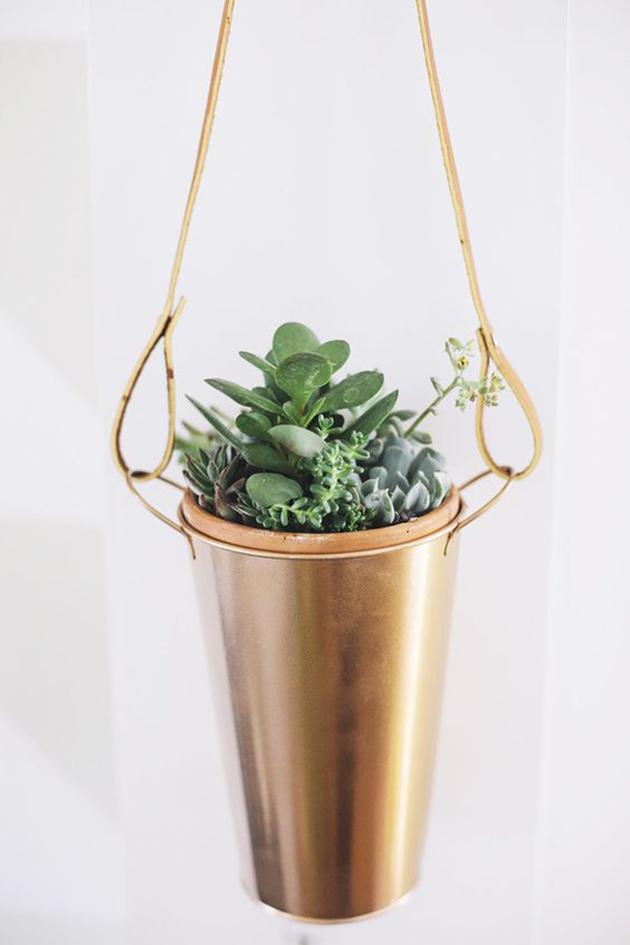 DIY succulent hanging pots
